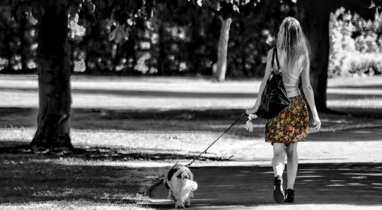 Can You Ease Brain Fatigue With a Walk in the Park?