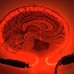 Electrical Brain Stimulation Beats Caffeine