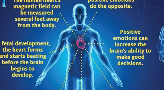 Did you know? – about the human heart and its magnetic field