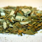 Yerba Mate Tea: Can it Help You Lose Weight?